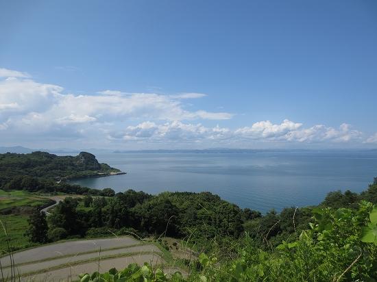 s-teshima  2.jpg