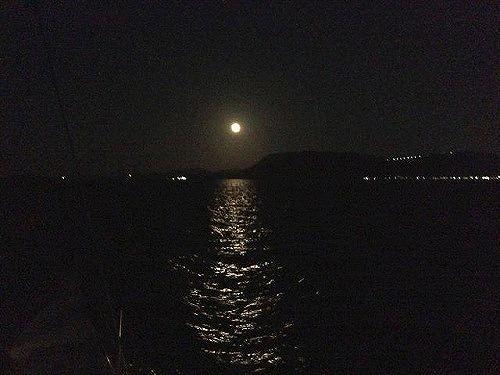 お月見 新.jpg