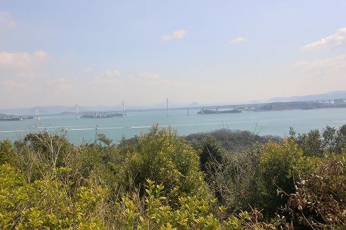 本島 015.jpg