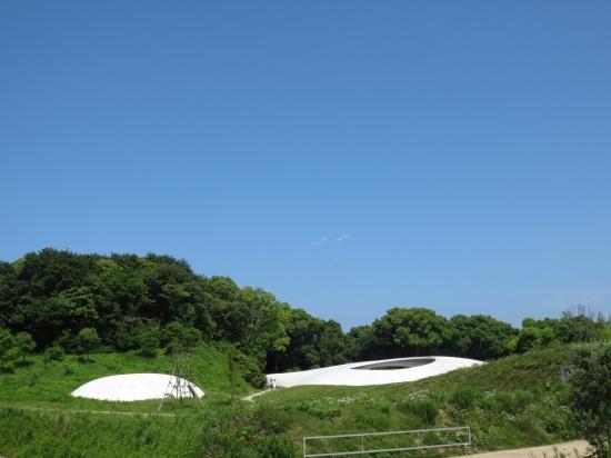 s-teshima bi.jpg